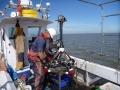 Coastal-Surveyor-6.jpg