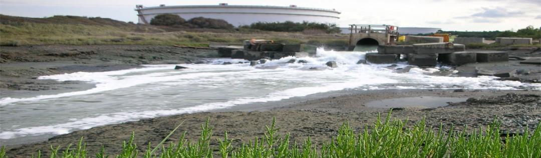 Marine Environmental Impact Assessment (EIA)