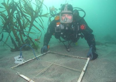 Diving survey impact assessment