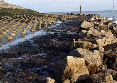Artificial coastal tructure surveys