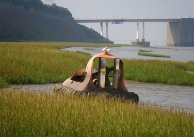 Senern Estuary Saltmarsh Survey
